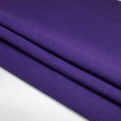 Sodrus violetinis rib
